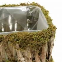 Panier de plantation mousse angulaire, écorce 34 × 15,5 / 24,5 × 11 cm, lot de 2