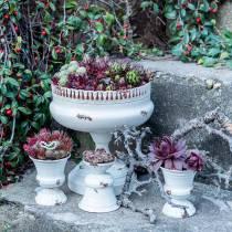 Coupe à Planter Calice Crème Antique Ø20cm H20cm 1p