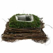 Coussin plante rotin, mousse 20cm x 20cm H8cm