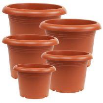 """Cache-pot """"Oliver"""" en terre cuite Ø15cm - 45cm, 1pce"""