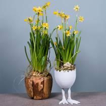 Cache-pot coquille d'oeuf avec pieds Ø13cm H21cm blanc