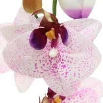 Orchidée artificielle phaleanopsis blanc, violet 43cm