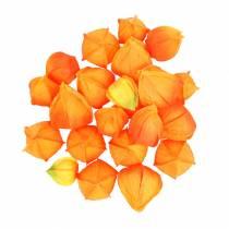 Physalis Orange Assortiment de calices artificiels 22pcs