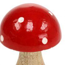 Amanite tue-mouches en bois rouge 11,5 cm
