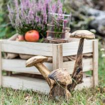 Champignons en bois de prunier H27cm
