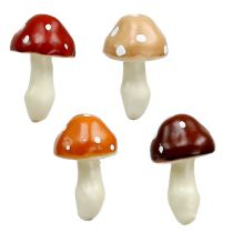 Mélange de champignon sur fil métallique 3cm x 5cm 48P