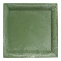 Assiette en plastique vert carré 19,5 x 19,5 cm