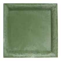 Assiette en plastique vert carré 26 x 26 cm