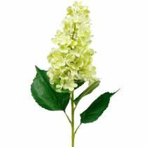 Hortensia panicule artificielle, vert hortensia, fleur en soie de haute qualité 98cm