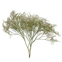 Plage lilas, fleurs séchées, Statice Tatarica, lavande de mer, Limonium, nature 100g