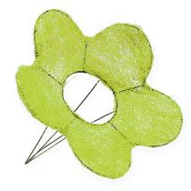 Support fleur en sisal vert Ø 25 cm 6 p.