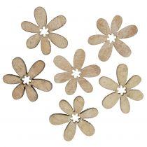 Fleurs éparses 2cm nature 144p