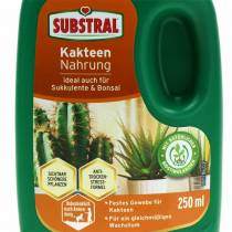Substral Cactus Food Engrais liquide 250ml