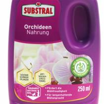 Aliment Substral Orchidée 250ml