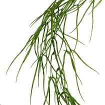 Succulente verte retombante 145 cm