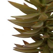 Branche de succulente brun clair 48 cm