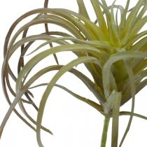 Tillandsia artificielle à coller Plante artificielle vert-violet 13cm
