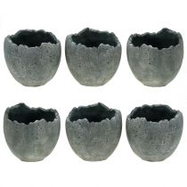 Cache-pot coquille d'oeuf Ø12cm H11,5cm 6pcs