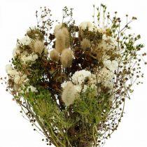 Bouquet de fleurs séchées aux herbes des prés blanches, vertes, brunes 125g de fleurs séchées