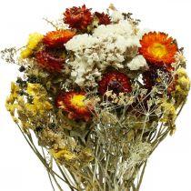 Bouquet de fleurs séchées Fleurs éternelles et lavande de mer 125g fleurs séchées