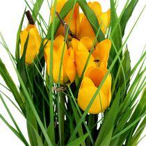 Tulipes en pot jaune 30cm