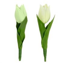 Décoration de printemps, tulipes artificielles, fleurs en soie, tulipes décoratives vert / crème 12pcs