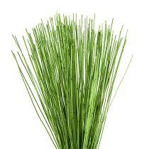 Vlei Reed 400g vert clair