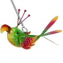Oiseau à suspendre vert, fuchsia, orange 18,5 cm