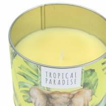 Bougie parfumée en boîte forêt tropicale jaune Ø9.5cm H8cm