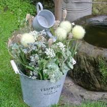 Bouquet de fleurs sauvages, achillée millefeuille naturelle, blanc lavé 30–60cm 150g
