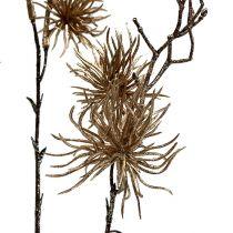 Hamamélis doré avec paillettes 50cm