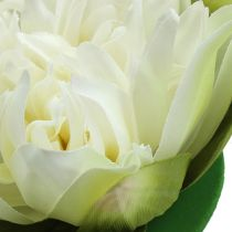 Fleur de lotus artificielle crème 13 cm 4 p.