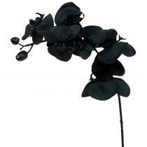 Orchidée à décorer noire 54cm