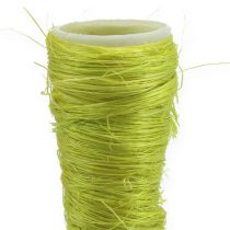 Entonnoir en sisal vert clair Ø 3 cm L. 30 cm 12 p.