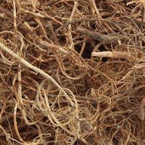 Fibre naturelle 500g de matériel d'artisanat naturel de fibre de tamarin décoratif de fibre