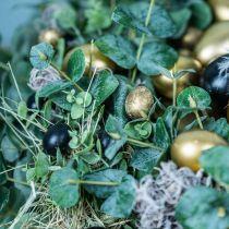 Oeuf de caille décoration noir vide 3cm décoration printemps décoration naturelle 50p