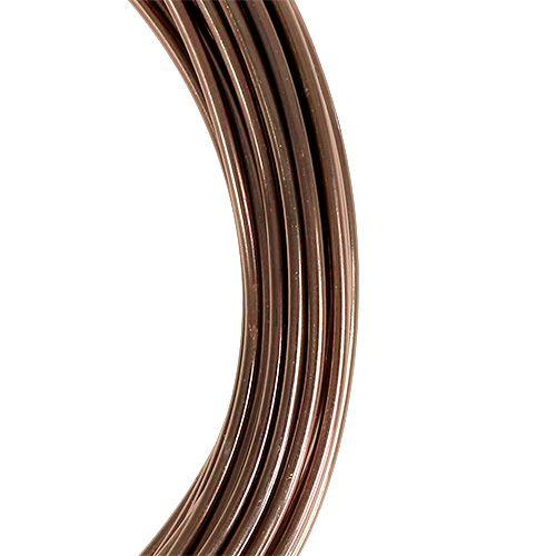 Fil d'aluminium en marron clair Ø2mm 12m