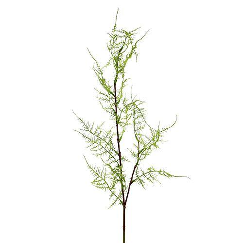 Branche d'asparagus verte 75 cm 3 p.