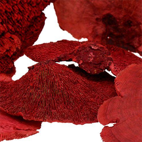 Arbre éponge rouge 1kg