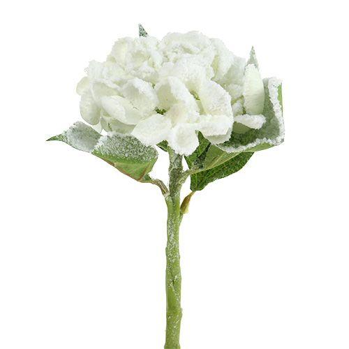 Hortensia blanc neigeux 33cm 4pcs