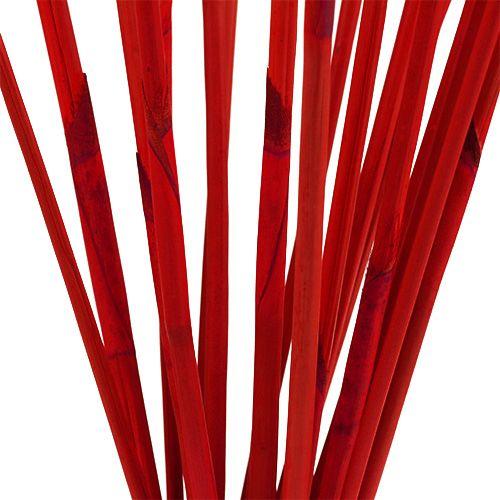 Bâtons décoratifs, Elephant Reed Red 20pcs