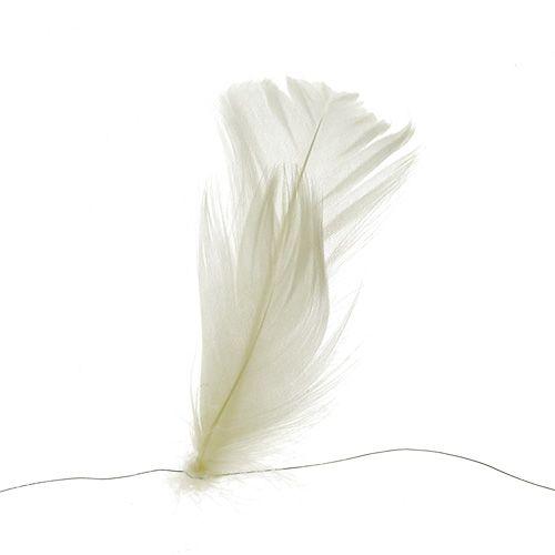 Plume sur fil crème 10m