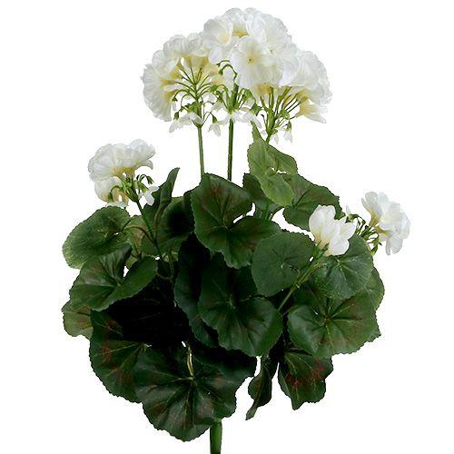 Buisson de géranium blanc 36 cm