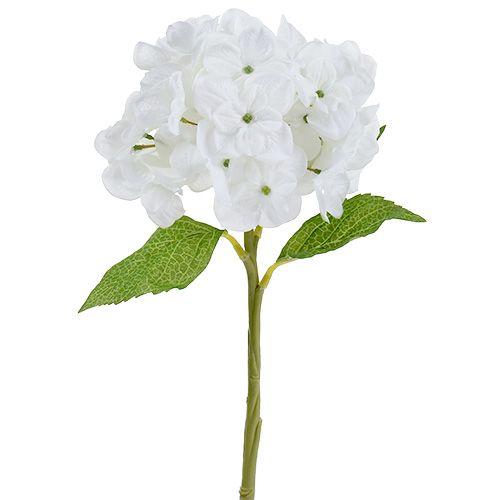 Hortensia 35cm blanc