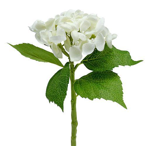 Hortensia 33 cm blanc 1 p.