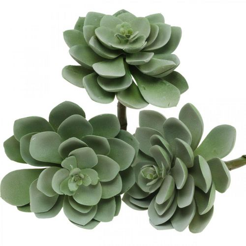Décoration plante succulente artificielle plantes artificielles vertes 11 × 8,5cm 3pcs