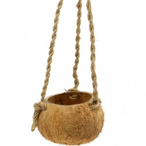 Bol coco à suspendre, jardinière naturelle, panier suspendu Ø8cm L55cm