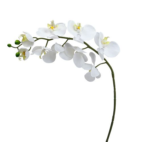 Orchidée papillon blanche 75 cm