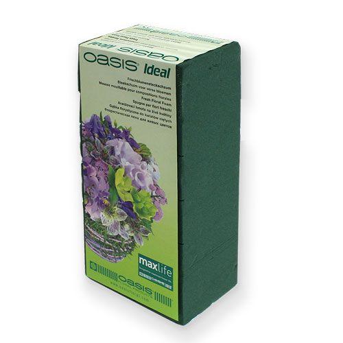 Mousse florale humide pour fleurs fraîches