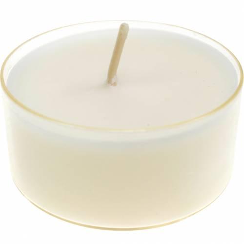 Bougies chauffe-plat Pure Nature Lights durée de combustion 10 heures Bougies cire de colza 8pcs